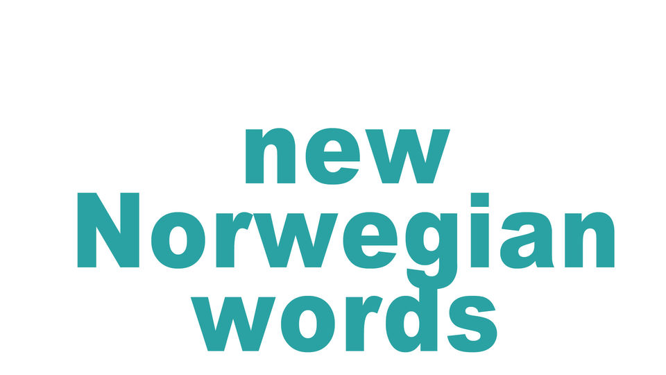 new Norwegian words