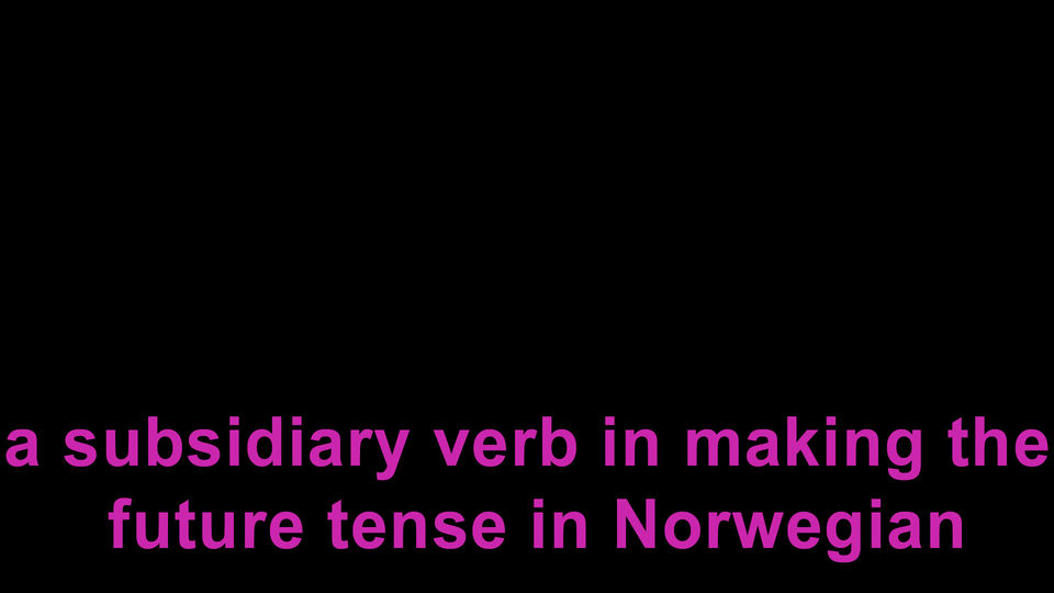 a subsidiary verb in making the future tense in Norwegian